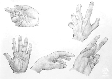 menggambar-anatomi-tubuh