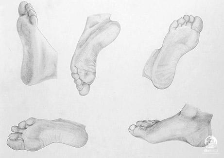 menggambar-anatomi-tubuh4
