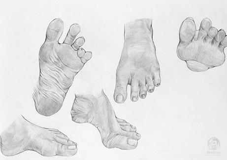 menggambar-anatomi-tubuh5